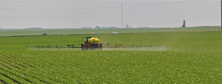 Tractor spraying in field