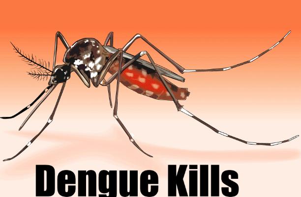डेंगू ,Dengue होने का कारण