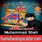 http://audionohay.blogspot.com/2014/10/muhammad-shah-nohay-2015.html