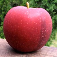 Joburn apple