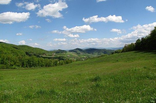 Dolina Potoku Kiczańskiego.