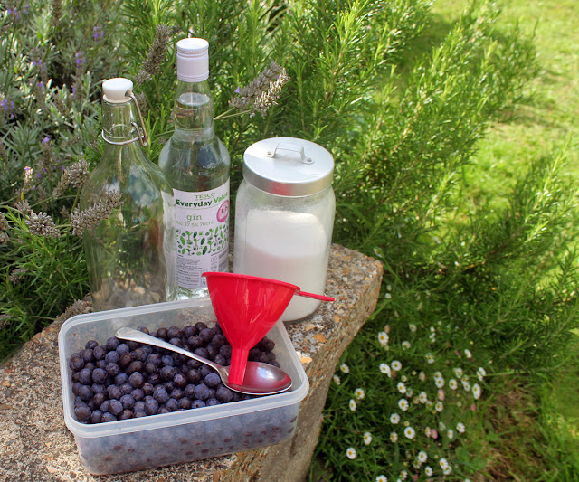 How To Make Sloe Gin - Last year I was given a small bottle of Sloe Gin by a neighbour, not being much of drinker I had never tried it before and it was really quite delicious if a little on the strong side! So being a lover of all things home made I knew it was definitely something I would like to try myself, well, once I had located a blackthorn hoard that is!