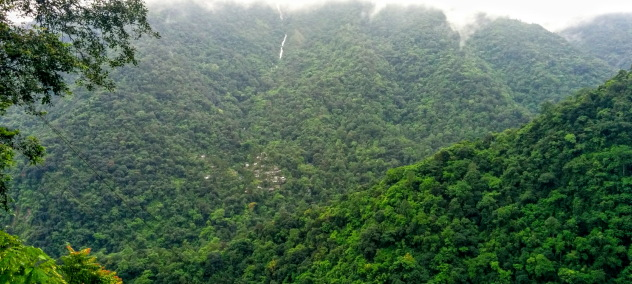 Nongriat village tucked under dense rainforests, Meghalaya