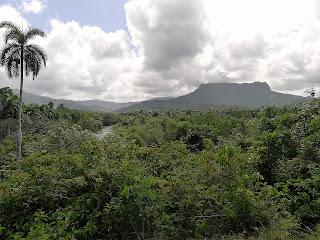 Baracoa, Kuba, Landschaft mit sattgrüner, tropischer Vegetation, am Horizont der ambossförmite El Yunque, links der Rio Duaba