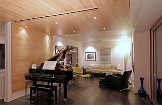 Sala techo madera