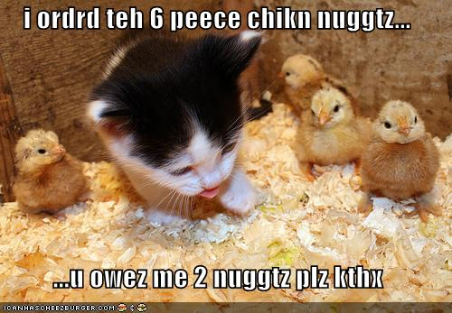 Funny Chicken Slogans: Hen Funny Quotes. QuotesGram
