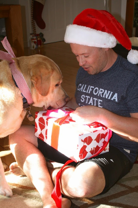Opening Christmas presents with help of pup