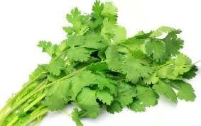 salad ke patte aur hara dhanya taza rakhne ke tips in urdu