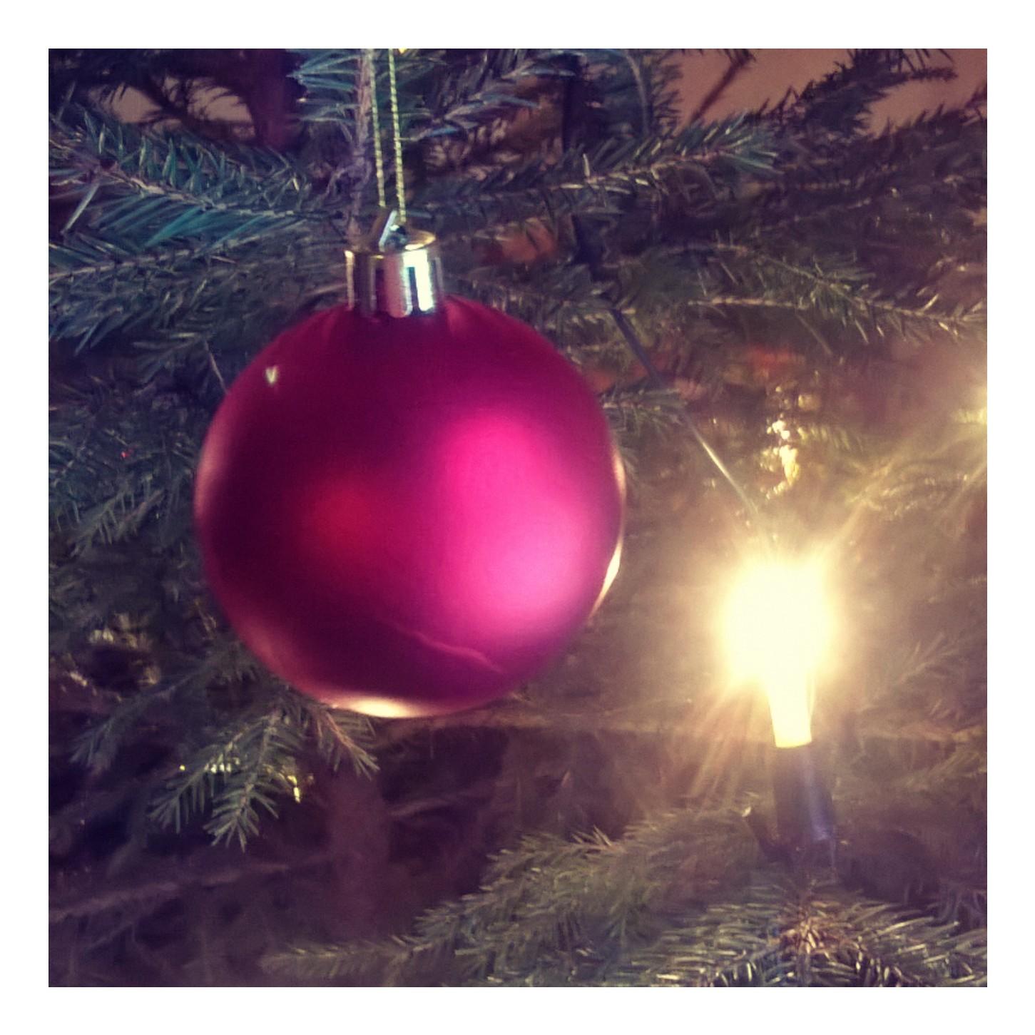 yyterin joulu 2018 Puutarhurin elämää: Hyvästi Joulu yyterin joulu 2018