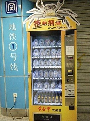 Safe In The Arms Of Love World S Most Bizarre Vending