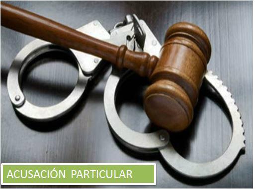 Modelo de Acusación Particular Bolivia