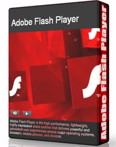 netscape flash plugin