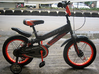 Sepeda Anak Raleigh® RC135 Roost 16 Inci - Designed in England