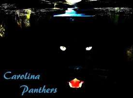 NFL Preview Standings Carolina Panthers