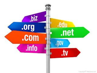 Apa Itu Domain TLD, Jenis dan Contohnya ?