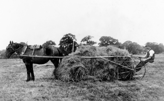 Photograph of Ben King, contractor with his hay sweep working at Bell Bar 1920