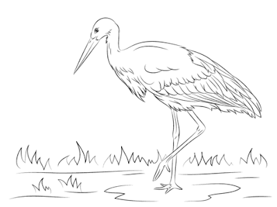 Adorable White Stork Coloring Pages