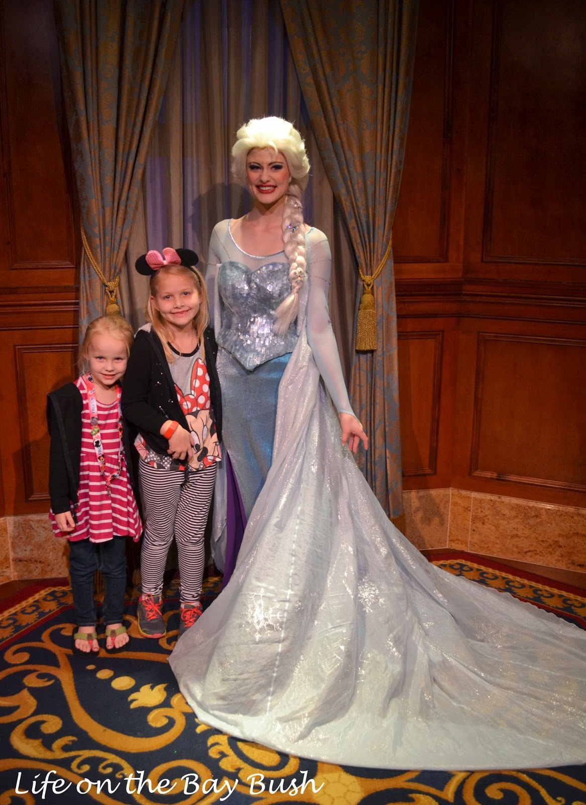 Meeting Elsa at the Magic Kingdom