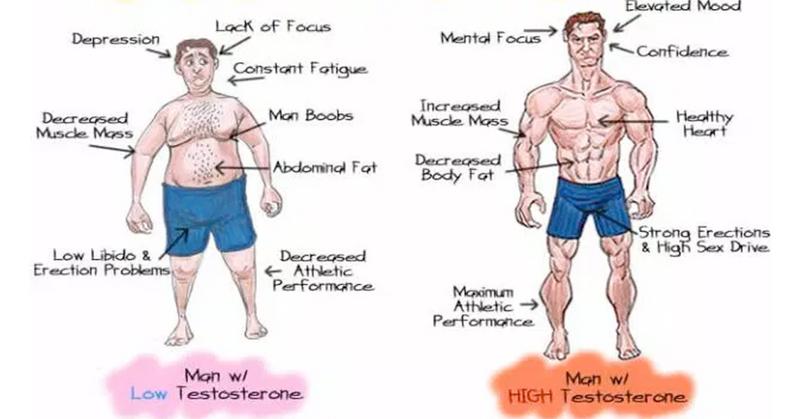 Bouncing boob testosterone test