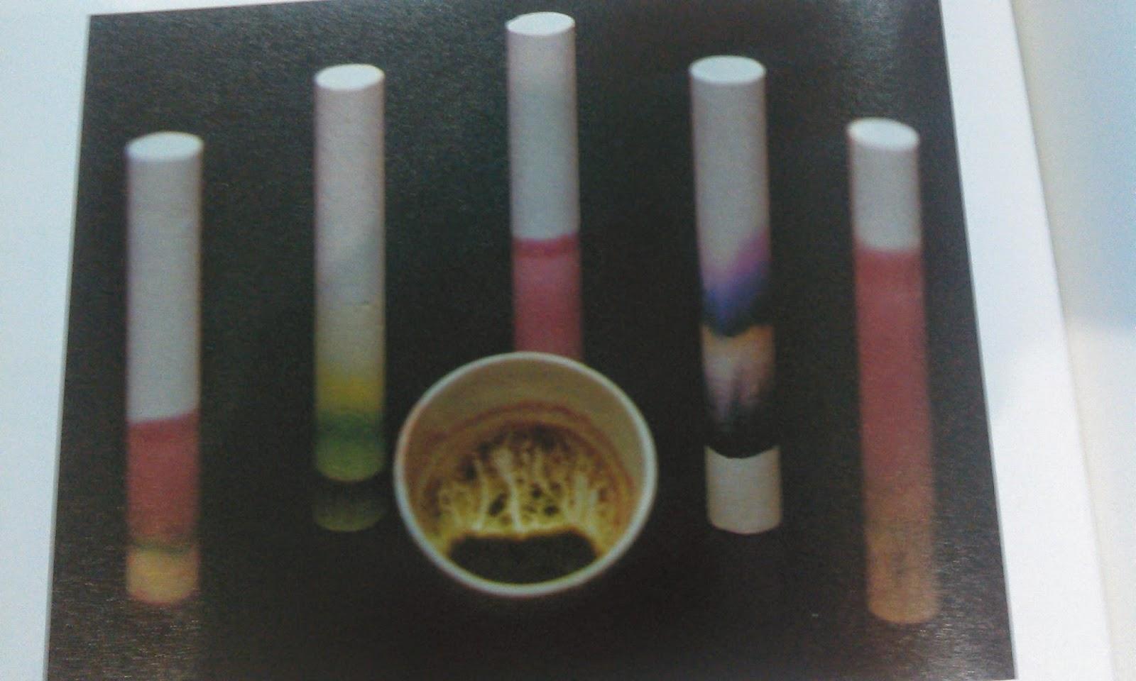 Percobaan Kromatografi Kapur