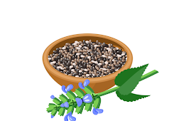 Check Nutritional Value of Chia Seeds