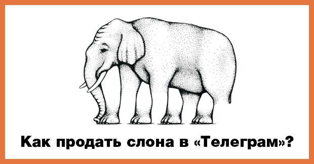 Как продать слона в Телеграм?