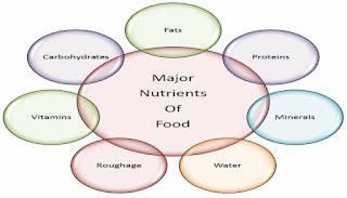 पोषक तत्व क्या है? What is nutrients?