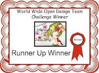 Runner Up Winner at World Wide Open Blog Challenge