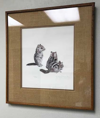 Framed black and white drawing of three chipmunks.