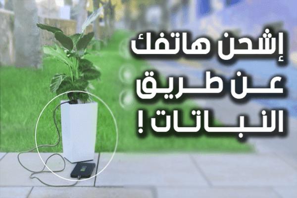 تقنية جديدة لشحن الهواتف الذكية عن طريق النباتات | تعرف عليها الأن !