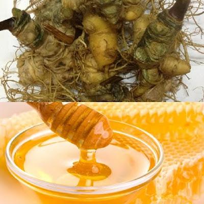 Sâm Ngọc Linh ngâm mật ong là cách chế biến đơn giản, phù hợp cho mọi nhà
