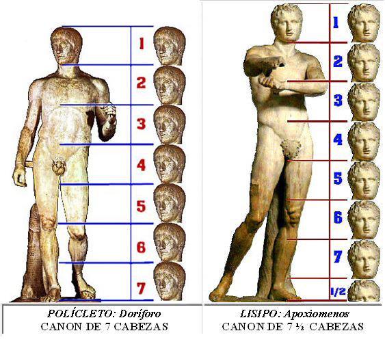 Resultado de imagen para proporcion de la figura humana