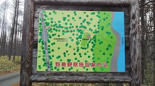 「生花苗沼」の観察小屋案内板