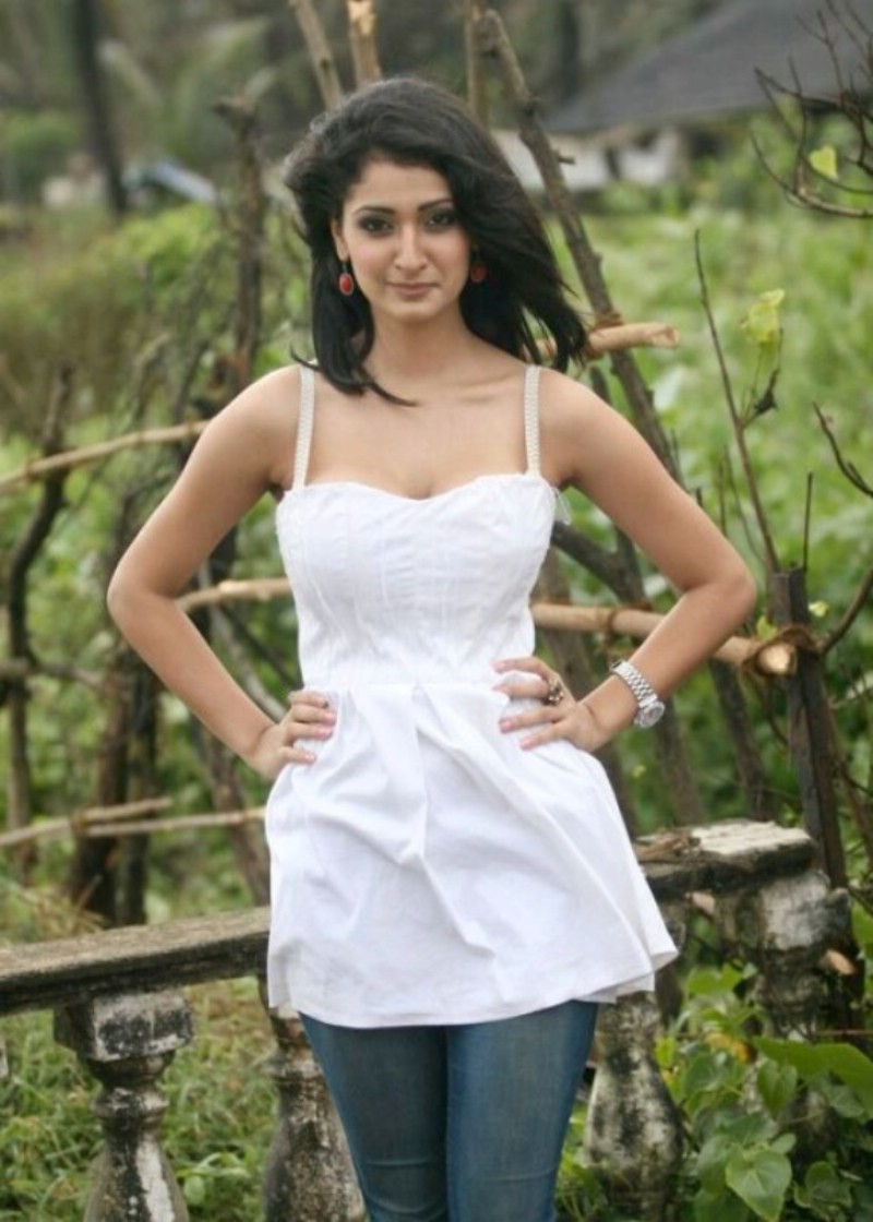 Indian Actress Delnaz Irani Hot Photoshoot, Delnaz Irani -8268