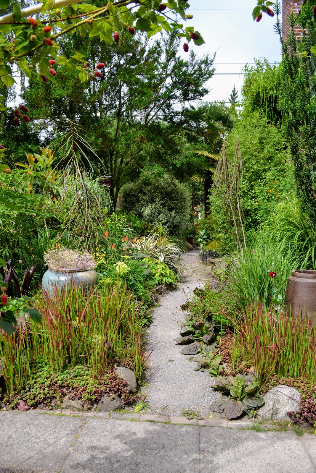 The Outlaw Gardener: The Garden of Julie King and Paul Smith