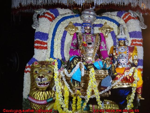 Adyar Anandha Padmanabha Swamy Brahmothsavam