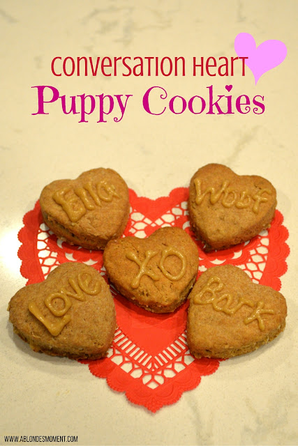 valentines-day-treat-for-dogs