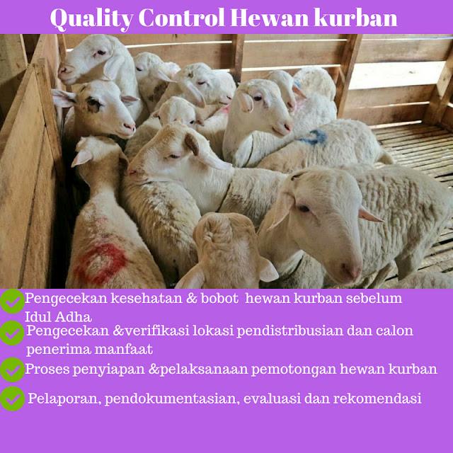 berbagi daging kurban ke seluruh indonesia
