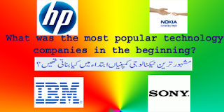 What was the most popular technology companies in the beginning?