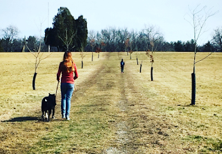 Kids-dog-hike-geocache
