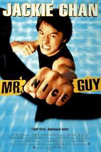 Mr. Nice Guy (1997) Dual Audio 300mb Download Hindi WEB-DL 480p