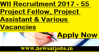 WII-jobs-55-Project-Fellow-Project-Assistant-Vacancies