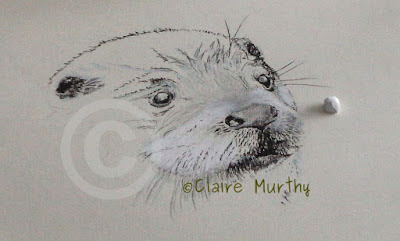 otter demo paint an otter in stages