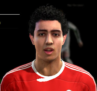 Face Hani Said Pes 2013 By MTFacemaker