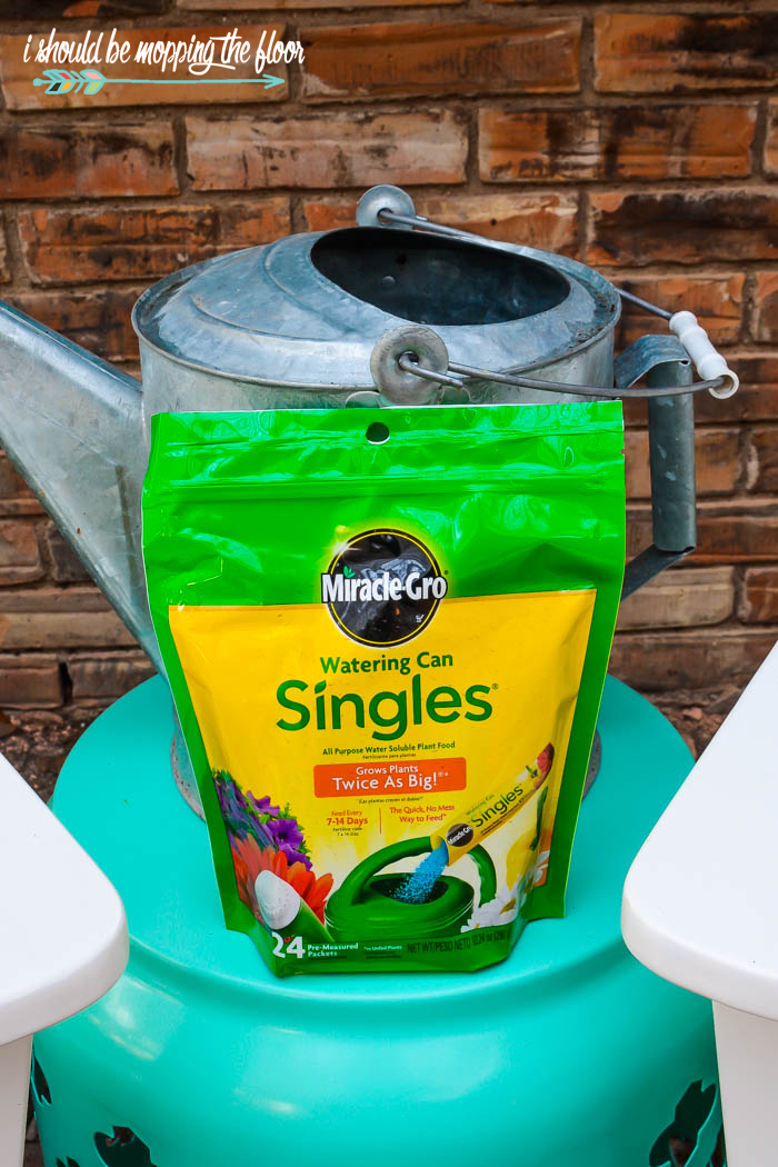 Miracle Gro Single Packets