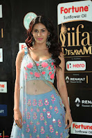Amyra Dastur in Flower Print Choli Transparent Chunni at IIFA Utsavam Awards 31.JPG