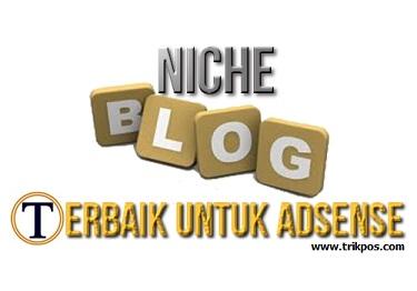 Niche Blog Terbaik Untuk Daftar AdSense