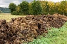 Los Fertilizantes Organicos