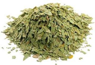 senna, herb, leaves
