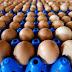 Milhões de ovos contaminados saíram de criadouros de quatro países europeus